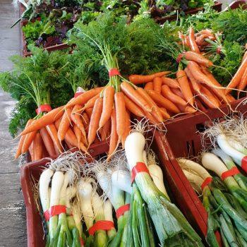 vente carotte poireaux